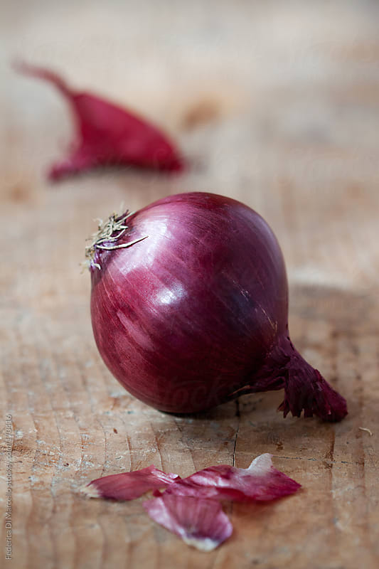Red onion by Federica Di Marcello for Stocksy United