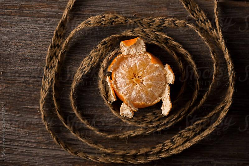 Mandarin Orange on Wood by Studio Six for Stocksy United
