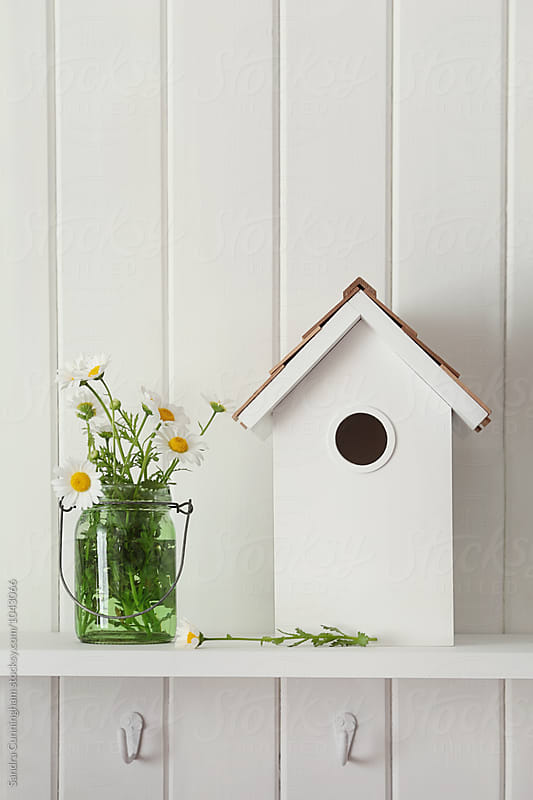 Cut daisies in jar with birdhouse on shelf by Sandra Cunningham for Stocksy United