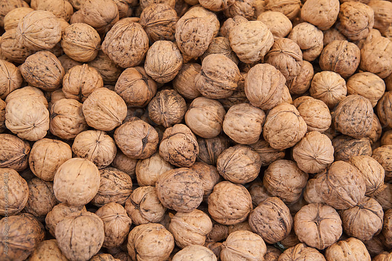 Fresh walnuts  by Alberto Bogo for Stocksy United