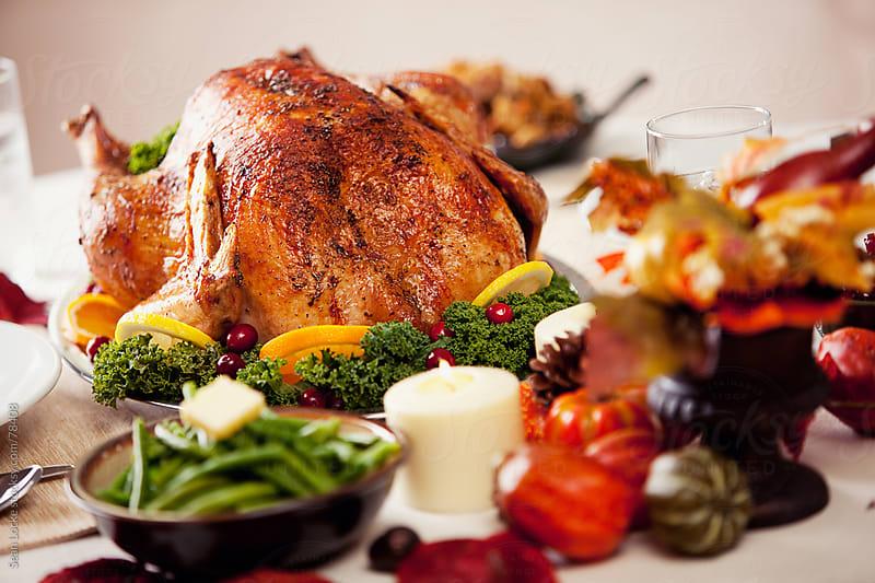 Thanksgiving: Roast Turkey on Platter by Sean Locke for Stocksy United