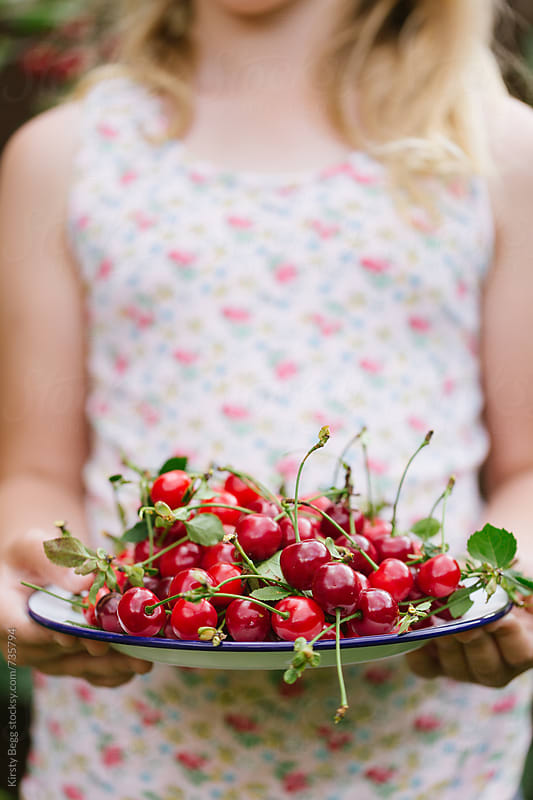Girl in floral top holding plate of picked cherries by Kirsty Begg for Stocksy United