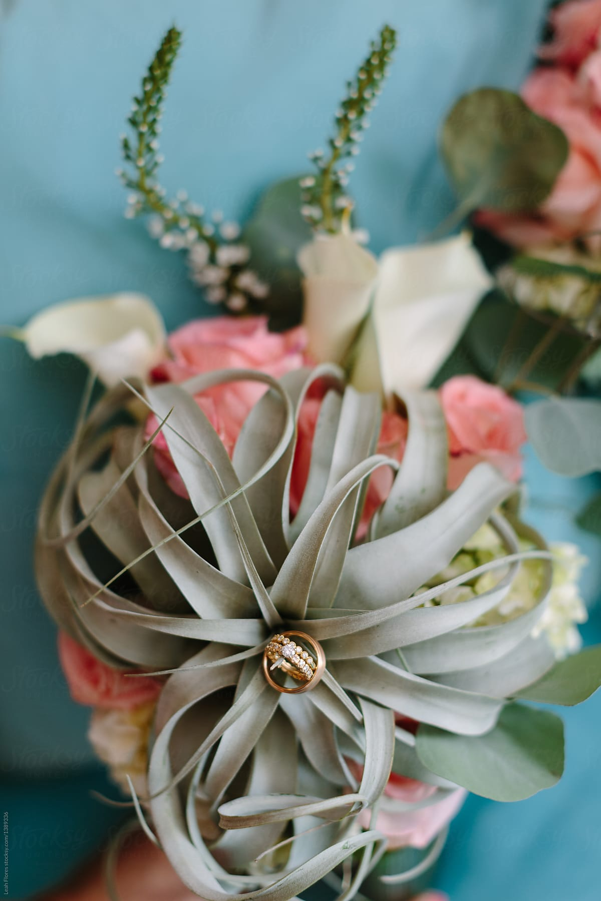 Air Plant Bouquet And Wedding Rings By Leah Flores Bouquet Wedding Ring Stocksy United