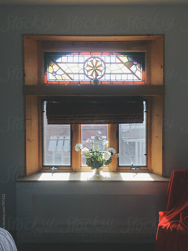 FLOWERS ON THE WINDOW by Rob Martinez for Stocksy United