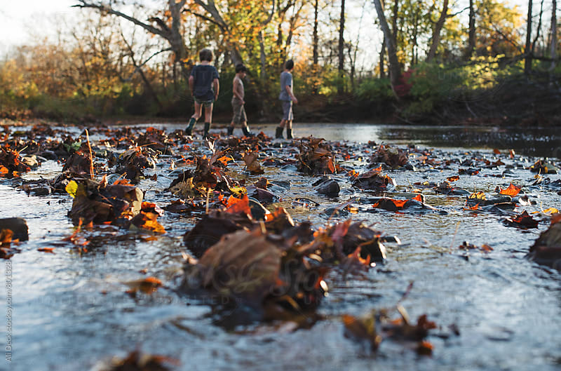 Brothers in a Fall Creek by Ali Deck for Stocksy United