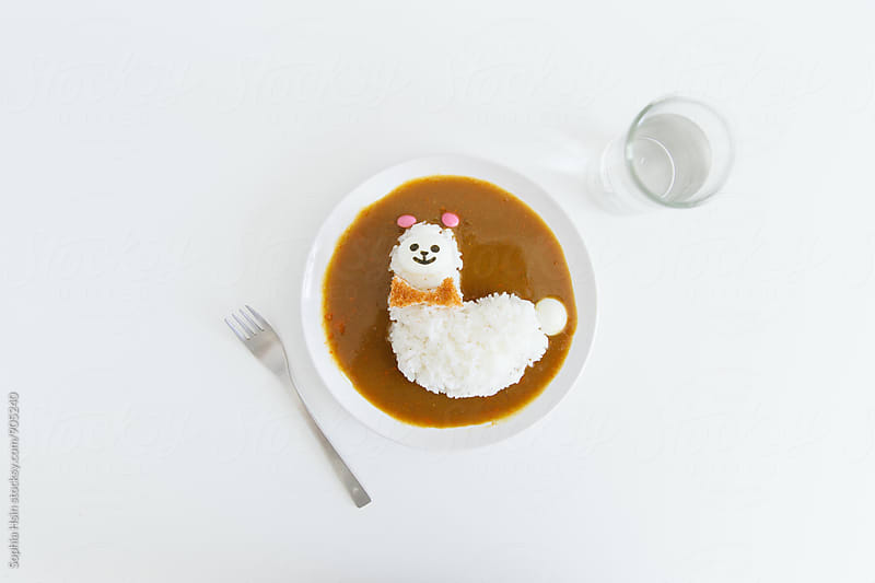 Alpaca Rice Curry by Sophia Hsin for Stocksy United
