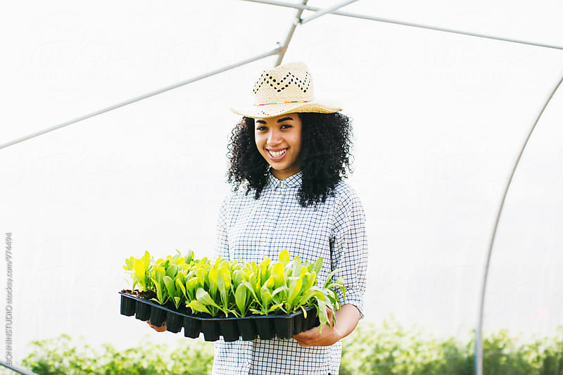 Farmer woman holding seedlings in a greenhouse. by BONNINSTUDIO for Stocksy United