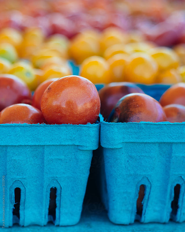 colorful tomatoes at the farmers market with one odd tomato sticking up in front by Tara Romasanta for Stocksy United