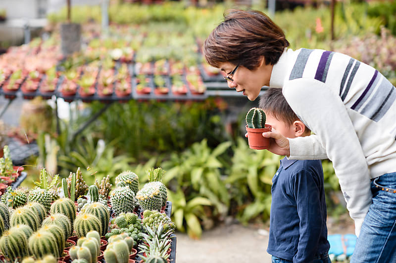 Woman and boy at cactuses market by Lawren Lu for Stocksy United