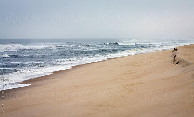 Winter beach by alan shapiro for Stocksy United