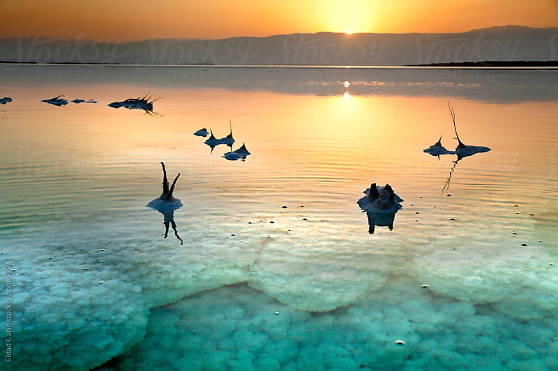 Sunrise In the Dead Sea - Underwater Salt Texture at Dawn by Eldad Carin for Stocksy United