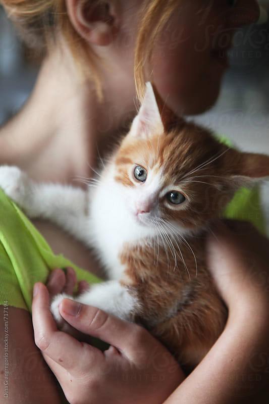 Kittle Girl Holding Orange and White Kitten by Dina Giangregorio for Stocksy United
