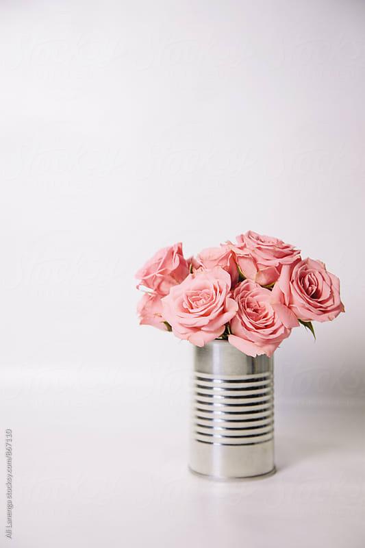 Pink Roses by Ali Lanenga for Stocksy United