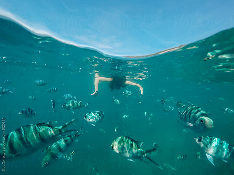 Woman snorkeling full of fish by Jordi Rulló for Stocksy United