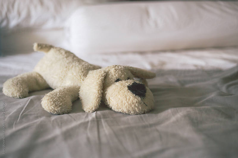 Cute dog toy lying on white bed. by Jovo Jovanovic for Stocksy United