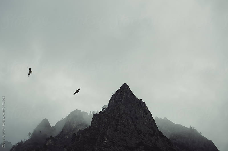 Mountain peak with eagles by Cosma Andrei for Stocksy United