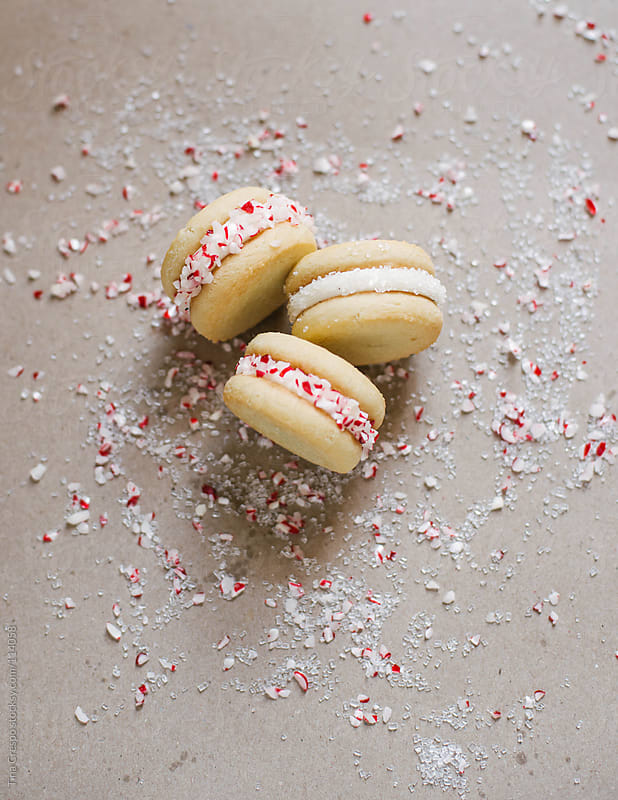 Holiday Cookie Sandwiches by Tina Crespo for Stocksy United