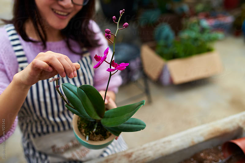 female florist working in shop by Bo Bo for Stocksy United