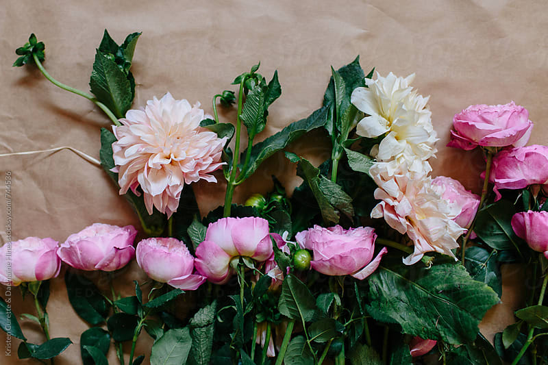 Horizontal row of Blush delilahs and pink garden roses by Kristen Curette Hines for Stocksy United