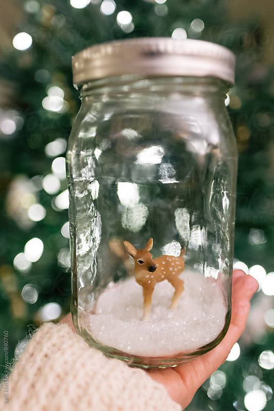 Hand holding deer in jar by kelli kim for Stocksy United