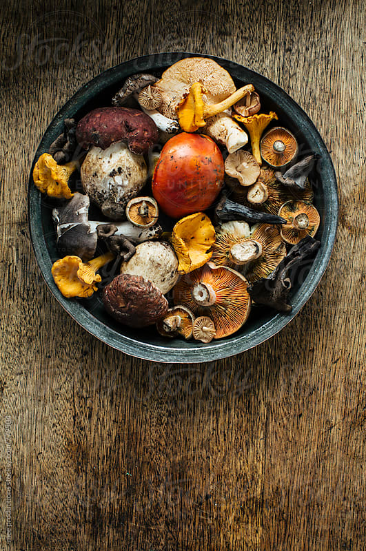 Food still life mushrooms on wooden table. by mee productions for Stocksy United