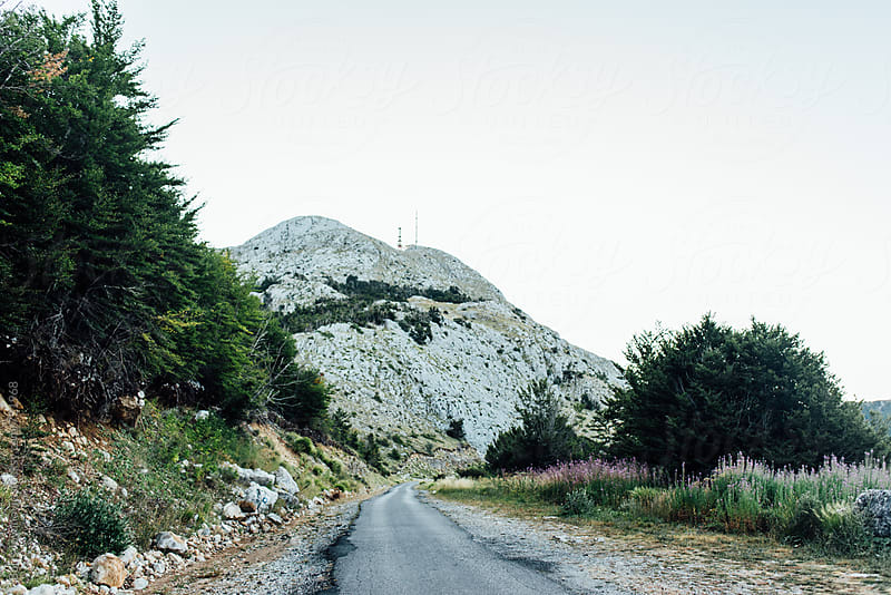 Small road leading to the mountain by Boris Jovanovic for Stocksy United
