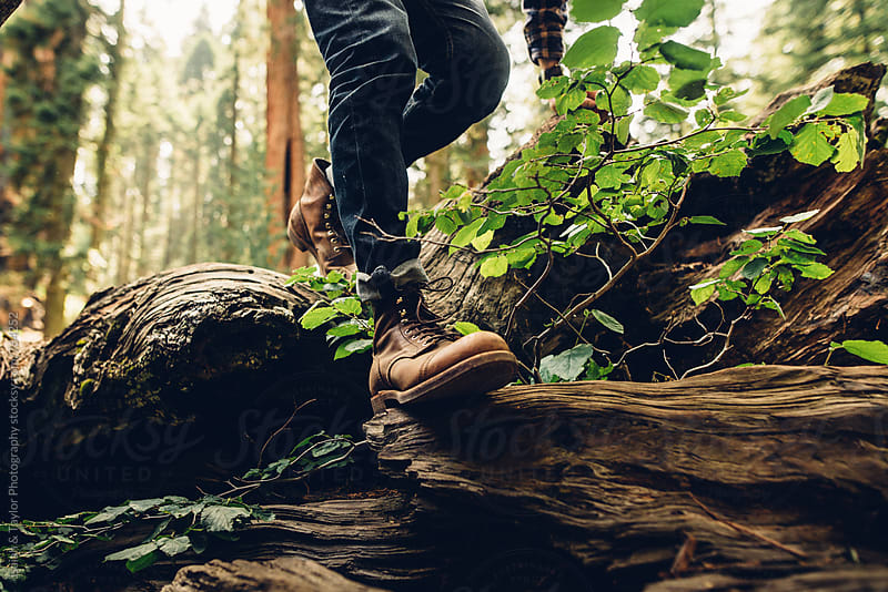 Boots walking log by Isaiah & Taylor Photography for Stocksy United