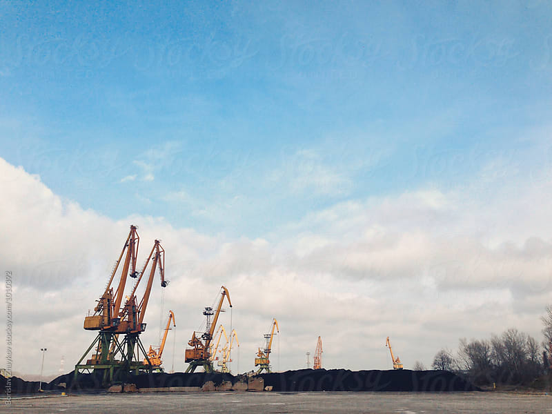 Cranes by Borislav Zhuykov for Stocksy United