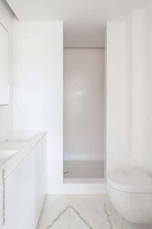 bathroom by Koen Van Damme for Stocksy United