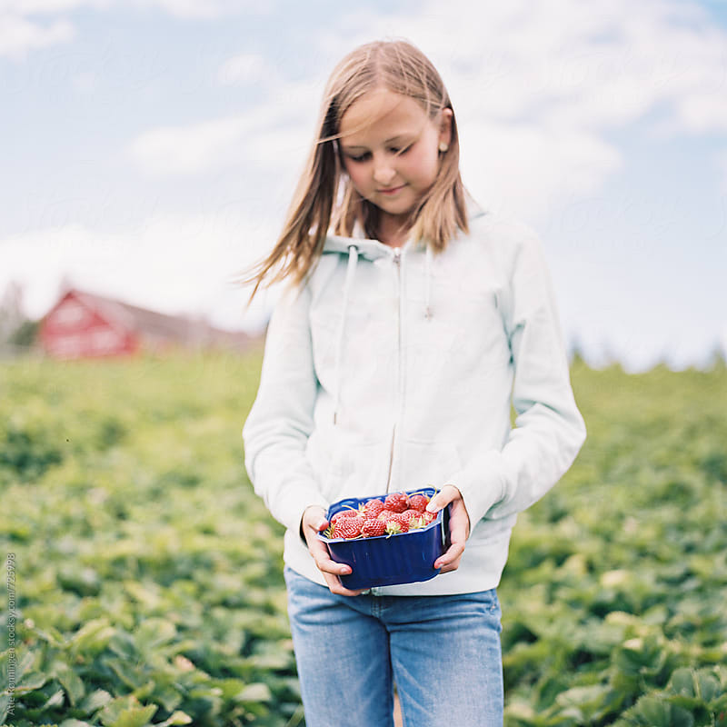 Cute young girl in hoodie and jeans holding a basket of red sun-ripened strawberries by Atle Rønningen for Stocksy United