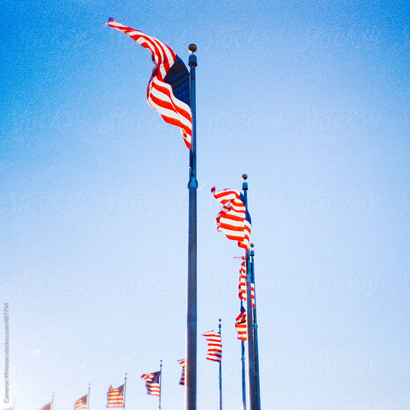 Ring of USA flags by Cameron Whitman for Stocksy United