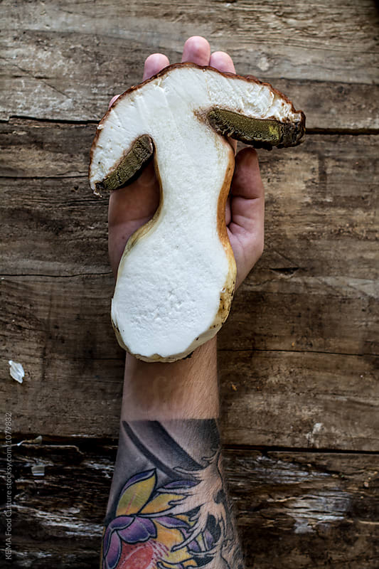 Holding a boletus by KEMA Food Culture for Stocksy United