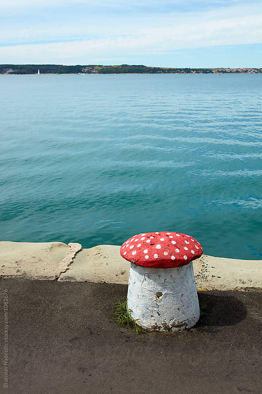 Bollard on the marine dock by Bratislav Nadezdic for Stocksy United