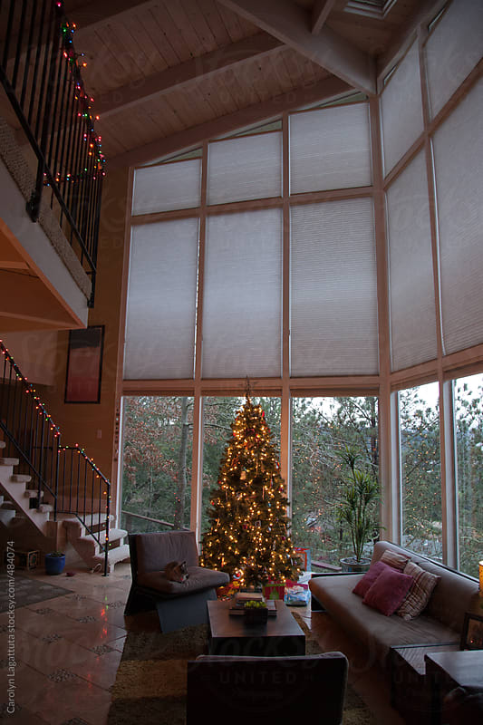 Christmas tree and lights in a modern home with large windows by Carolyn Lagattuta for Stocksy United