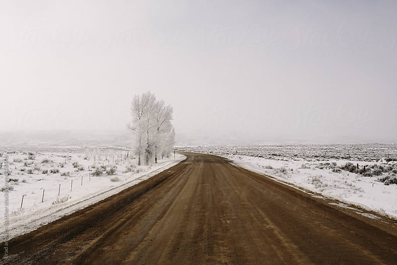 Winter Road by Brad and Jen Butcher for Stocksy United