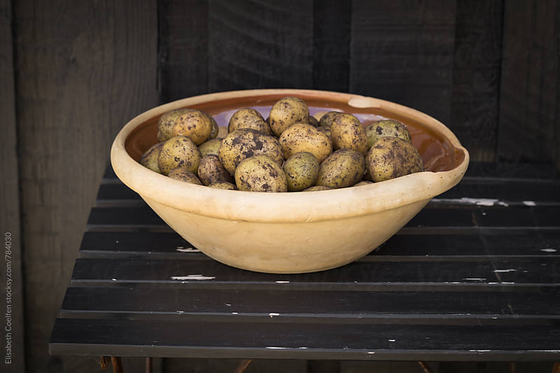 Local Danish potatoes in a big bowl outside by Elisabeth Coelfen for Stocksy United