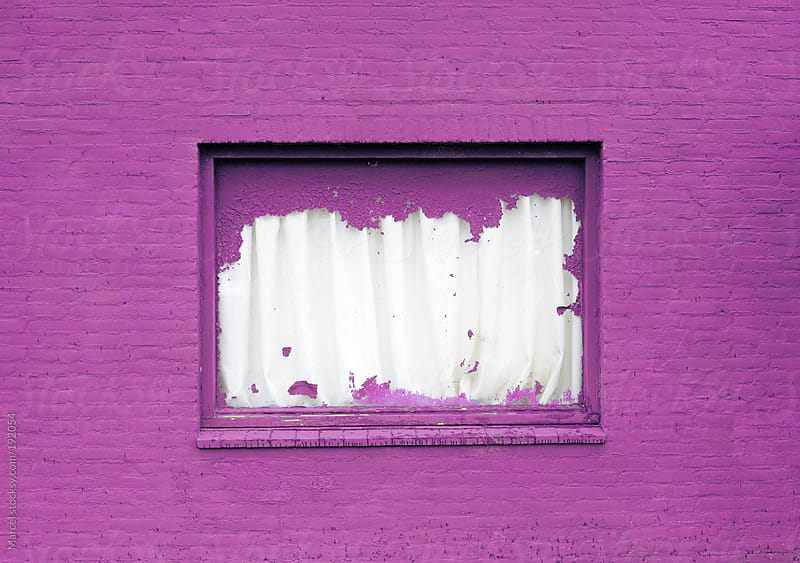 Wall and window painted pink by Marcel for Stocksy United