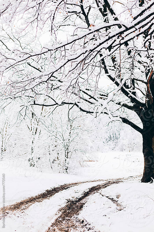 Winter snow and dirty road with tire tracks  by Borislav Zhuykov for Stocksy United