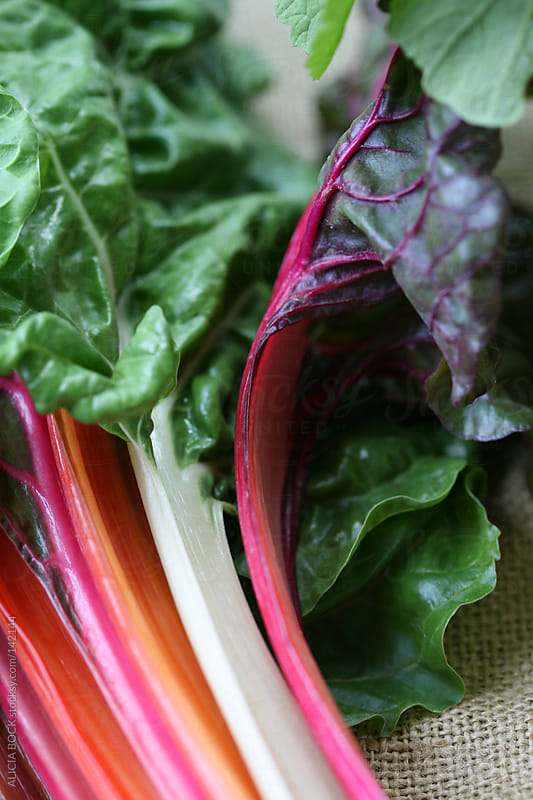 Rainbow Chard - Vertical by ALICIA BOCK for Stocksy United