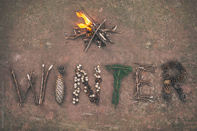 Winter word handmade with nature elements on brown background. by BONNINSTUDIO for Stocksy United