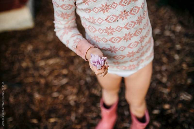 Birds Eye View of Little Girl from Neck Down Holding a Purple Flower by Amanda Voelker for Stocksy United