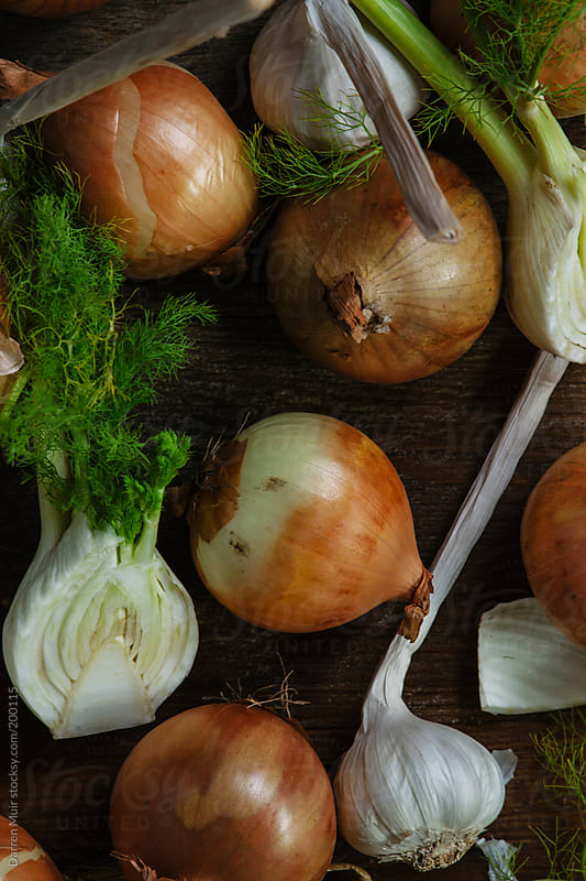 Garlic,fennel and onions. by Darren Muir for Stocksy United