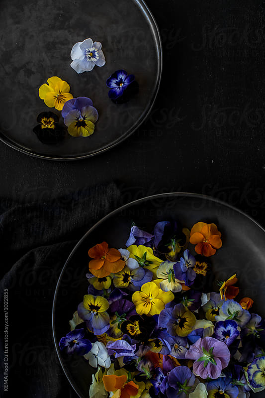 Edible flowers by KEMA Food Culture for Stocksy United