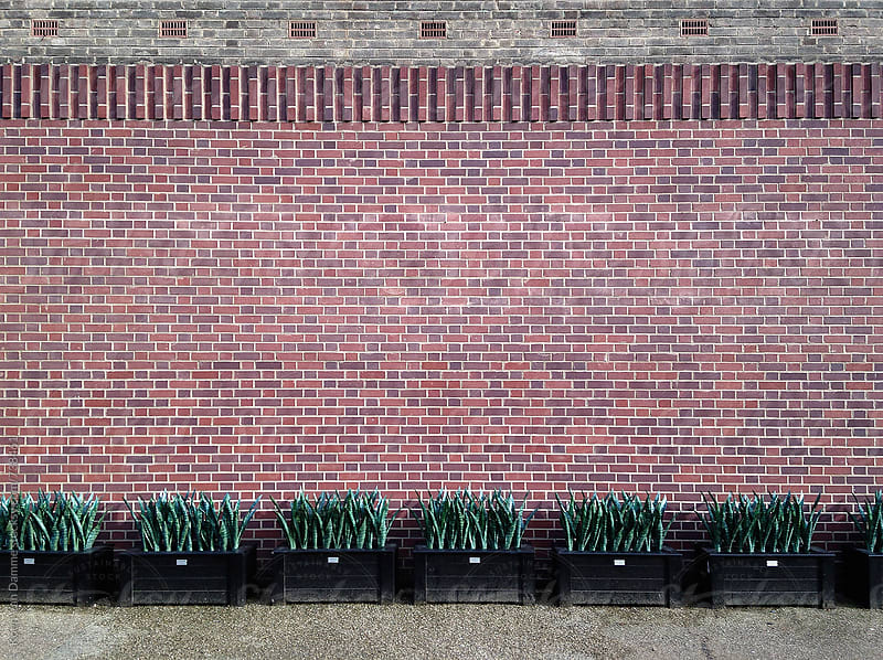 San Severia wall by Koen Van Damme for Stocksy United