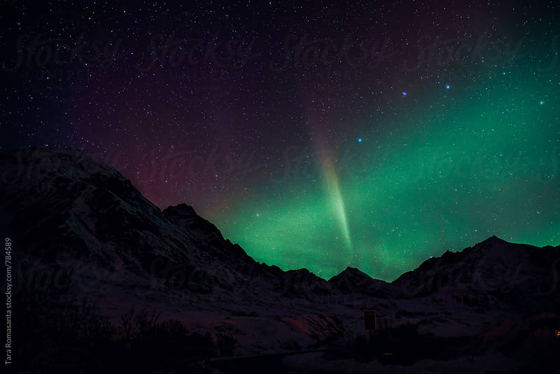 aurora borealis spike by Tara Romasanta for Stocksy United