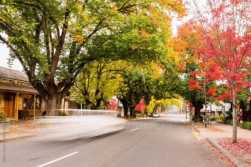 autumn street scenes, adelaide hils with car in motion by Gillian Vann for Stocksy United