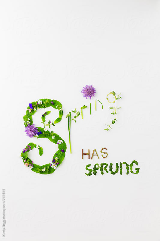 Spring Has Sprung by Kirsty Begg for Stocksy United