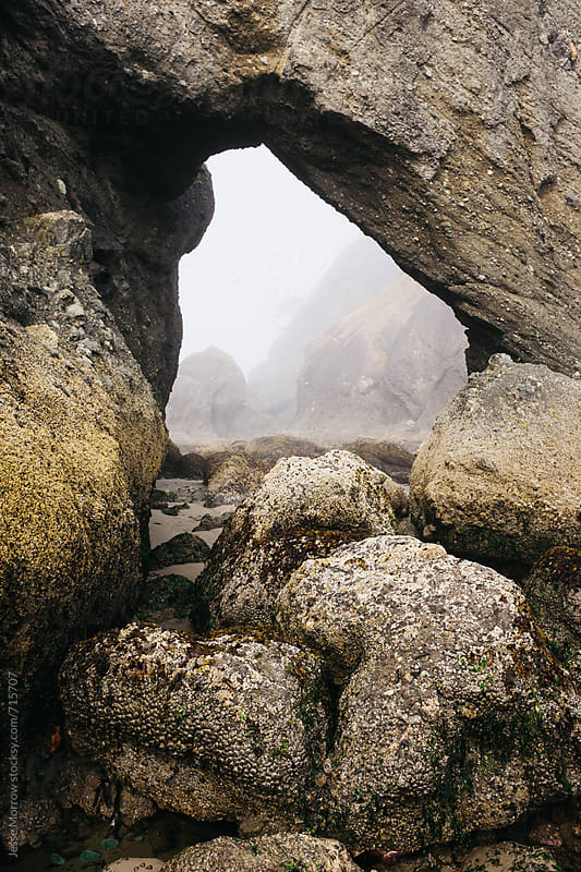arch way in stone on beach in washington  by Jesse Morrow for Stocksy United