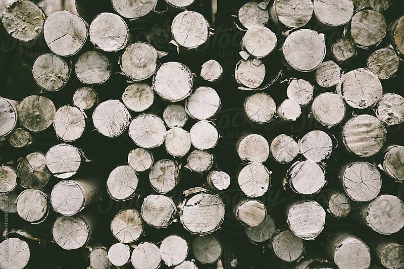 firewood by Alexey Kuzma for Stocksy United