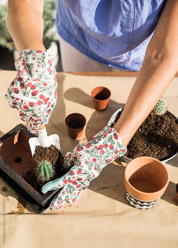 Woman Putting Soil in a Flower Pot by Mosuno for Stocksy United